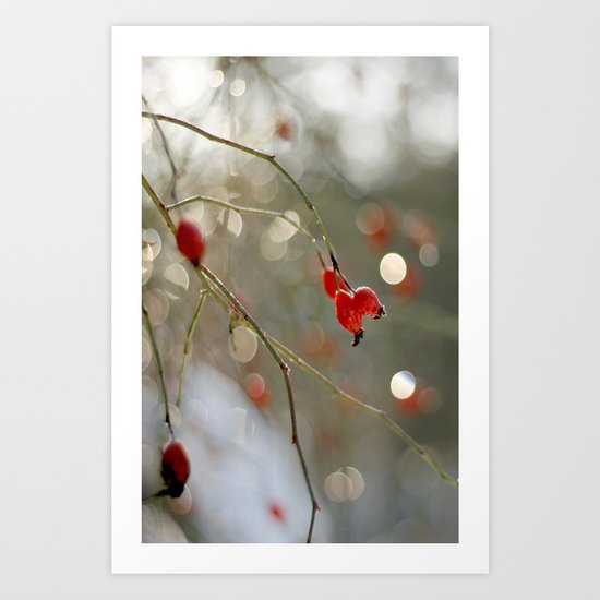 ROSEHIP AND BOKEH Art Print