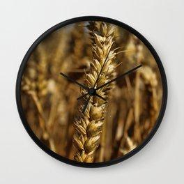 Ear of wheat Wall Clock