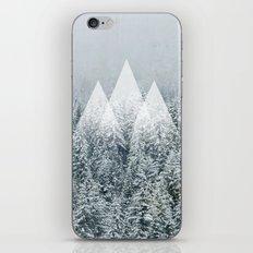 Winter Time iPhone & iPod Skin