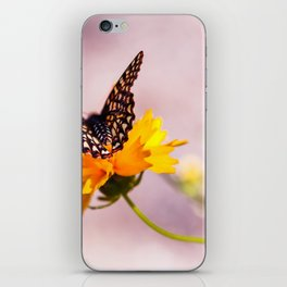 A Sip Of Coreopsis iPhone Skin
