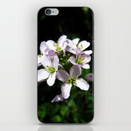 cardamine 1 iPhone Skin