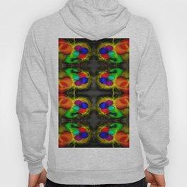 Colorandblack serie 406 Hoody