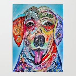 Laughing Labrador Poster