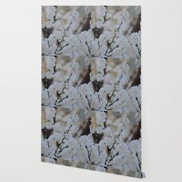 Small white blossoms Wallpaper