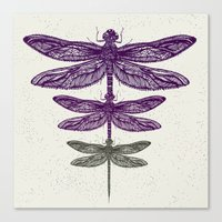 dragonfly Canvas Prints featuring Dragonfly  by rskinner1122