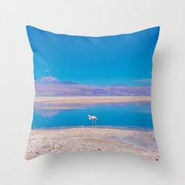 Flamingos in the Desert, San Pedro de Atacama, Chile Throw Pillow