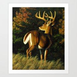 Whitetail Deer Trophy Buck Art Print