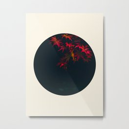 Red Maple Against Black Background Round Photo Metal Print