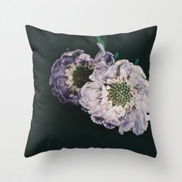 foreground Throw Pillow