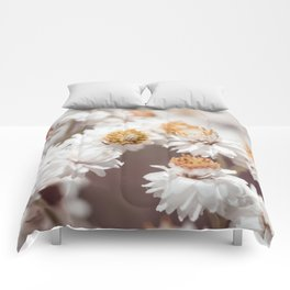 Pearly Everlasting Comforters