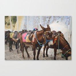 Island Ride Canvas Print