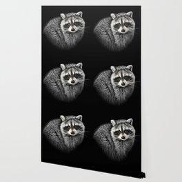 A Gentle Raccoon Wallpaper