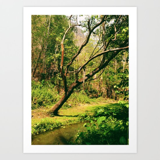 Wang Madcha Creek Art Print