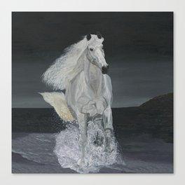 White Horse Freedom Canvas Print