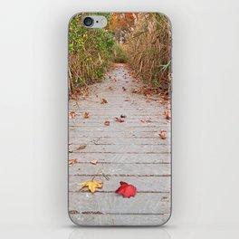 Autumn Marsh Boardwalk iPhone Skin