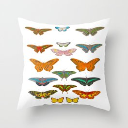 Vintage Scientific Illustration Of Colorful Butterflies Throw Pillow