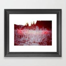 Candy Cane Framed Art Print