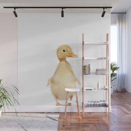 Hello Ducky Wall Mural