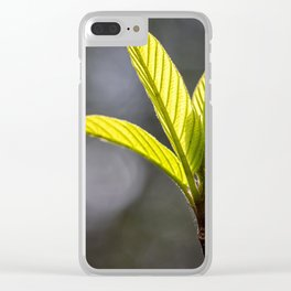 Springtime in Texas Clear iPhone Case