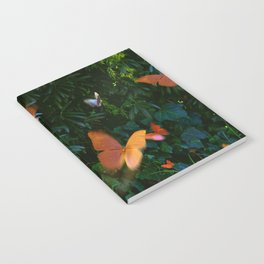 Elegant, Colorful Fantasy Butterflies in Flight Notebook
