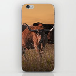Texas Longhorn Steers on the Prairie at Sunset iPhone Skin