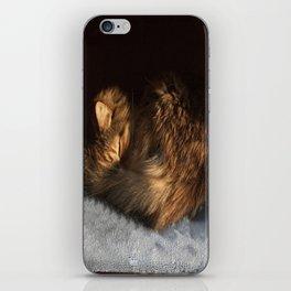 Curled iPhone Skin