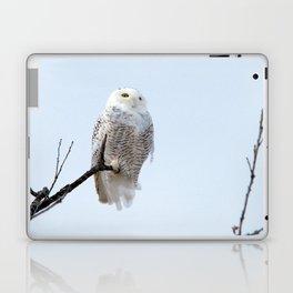 Lofty Vision (Snowy Owl) Laptop & iPad Skin