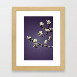 Spring in Hangzhou Framed Art Print