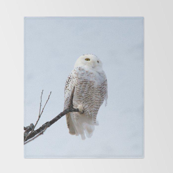 Lofty Vision (Snowy Owl) Throw Blanket