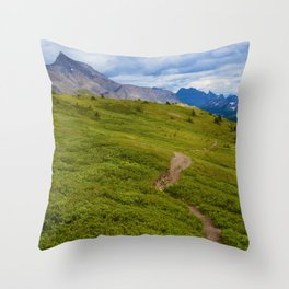 Views Along the Wilcox Pass Trail in Jasper National Park, Canada Throw Pillow