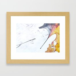 Fossils 62 Framed Art Print