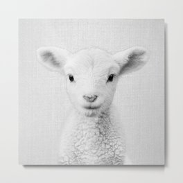 Lamb - Black & White Metal Print