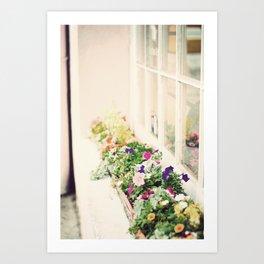 charleston flower boxes Art Print