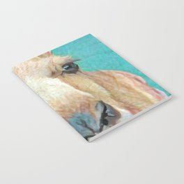 Roo Roo Notebook