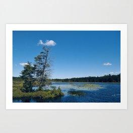 Lake Life Art Print