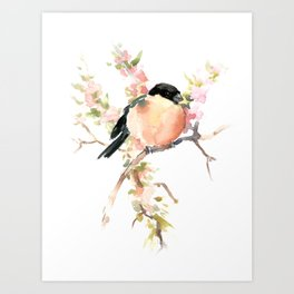 Bullfinch and Spring, Peach colored Floral bird art, spring soft colors Art Print