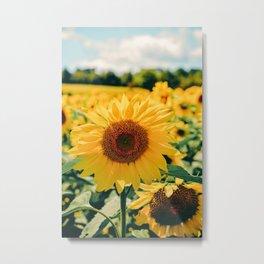 Happy Little Sunflowers Metal Print