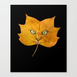 Autumn Cat-2 Canvas Print