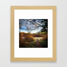 Out of the Woods and Back to the Frosty Path Framed Art Print