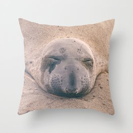 Sleeping Seal Throw Pillow