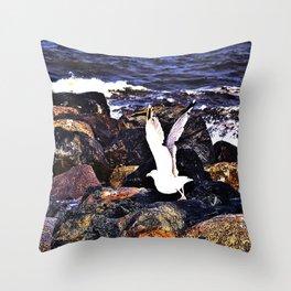 Seagull Ready For Flight Throw Pillow