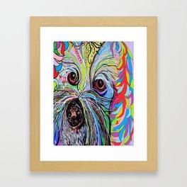 Cavapoo Framed Art Print