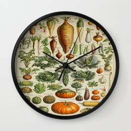 VEGETABLES Legumes Et Plantes Potageres Vintage Scientific Illustration French Language Encyclopedia Wall Clock