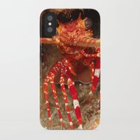 lobster iPhone & iPod Cases featuring Lobster by Lisa Johnson Cohen