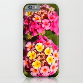 Lantana flowers iPhone Case