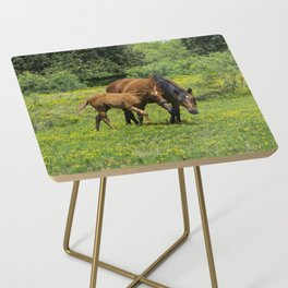 Young foal horse walking next to its mother in a field Side Table