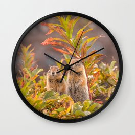 Sweet couple of Arctic ground squirrels in Autumn Wall Clock