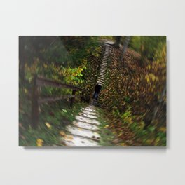 Autumn Swirl of Leaves Metal Print