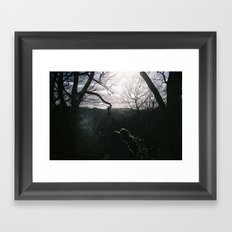 Magical woods Framed Art Print