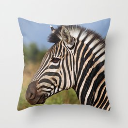 Zebra - Africa wildlife Throw Pillow